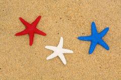 Stelle marine patriottiche sulla spiaggia Immagini Stock