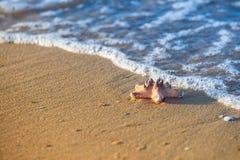 Stelle marine su una spiaggia sabbiosa e mare come simbolo di vacanza Fotografia Stock