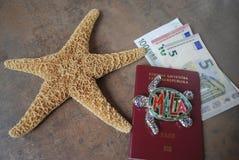 Stelle marine sulla mappa, euro banconote, fondo delle carte di credito Fotografia Stock