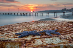Stelle marine Tekirdag, Turchia di tramonto Fotografia Stock Libera da Diritti