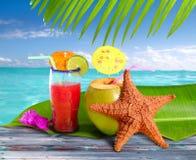 Stelle marine tropicali della spiaggia della paglia dei cocktail delle noci di cocco Immagini Stock