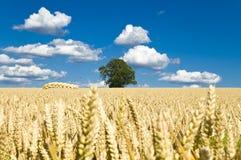 Stellen Sie auf einem backgound des blauen Himmels und der Wolken auf Lizenzfreie Stockfotografie