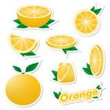 Stellen Sie Aufkleber der frischen Zitrusfrucht geschnittene und ganze orange Frucht mit Haut mit Grünblättern auf einem weißen H vektor abbildung