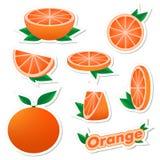 Stellen Sie Aufkleber der frischen Zitrusfrucht geschnittene und ganze orange Frucht mit Haut mit Grünblättern auf einem weißen H lizenzfreie abbildung