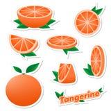 Stellen Sie Aufkleber der frischen Zitrusfrucht geschnittene und ganze Tangerinefrucht mit Haut mit Grünblättern auf einem weißen lizenzfreie abbildung
