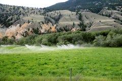 Stellen Sie Bewässerung auf stockbild