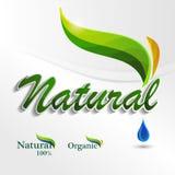 Stellen Sie Eco-Logos, Designschablonenelemente, natürliche Ikone ein Lizenzfreies Stockfoto