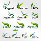 Stellen Sie Eco-Logos, Designschablonenelemente, natürliche Ikone ein Lizenzfreie Stockbilder