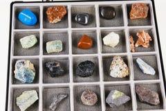 Stellen Sie, eine Mineraliensammlung im Kasten ein Stockbilder
