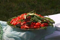 Stellen Sie einen großes Metalltiefen Teller mit gehacktem Gemüse auf einem Picknick dar Lizenzfreie Stockfotografie