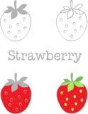Stellen Sie Erdbeere auf Grau und Erdbeere auf rote Farbe ein Stockfoto