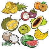 Stellen Sie Farbgekritzel von tropischen Früchten auf weißem Hintergrund durch Vektorillustration ein Stockfotografie