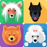 Stellen Sie flaches Design der Hundekopf-Ikone ein vektor abbildung