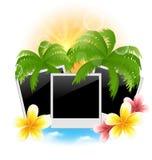 Stellen Sie Fotorahmen mit Palmen ein, blüht Frangipani, Meerblick backgro Stockbild