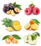 Stellen Sie Frucht ein Lizenzfreies Stockbild