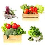 Stellen Sie Gemüse in der Holzkiste, im Kopfsalatsalat und in den Rote-Bete-Wurzeln ein Lizenzfreie Stockfotos