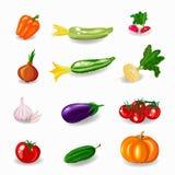 Stellen Sie Gemüse ein Flaches Design Stockfotos