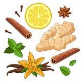 Stellen Sie Gewürze des Ingwers, der Zitrone, der Vanille, der Minze, des Zimts und der Nelken ein Stockfotografie