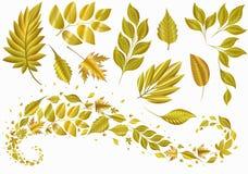 Stellen Sie Goldblatt ein Autumn Decorations Muster Stockfotos