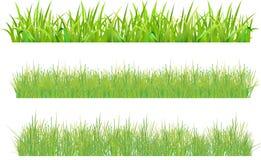 Stellen Sie Gras ein stock abbildung