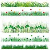 Stellen Sie Gras und Blätter ein Lizenzfreie Stockfotos