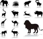Stellen Sie Ikonen - 25 ein. Tiere stock abbildung