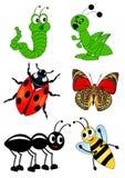Stellen Sie Insekt ein lizenzfreie abbildung