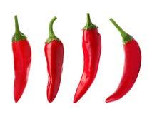 Stellen Sie mit frischen Pfeffern des roten Paprikas auf weißem Hintergrund ein lizenzfreies stockbild