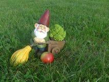 Stellen Sie mit Schubkarre und Apfel, Kürbis und Brokkoli in den Schatten Stockfotos