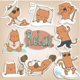 Stellen Sie mit siames Kätzchen ein lizenzfreie abbildung