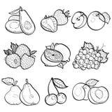 Stellen Sie Sammlungsgekritzel von Früchten durch Vektorillustration ein Lizenzfreie Stockbilder