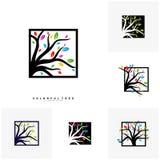 Stellen Sie vom bunten Baum Logo Design Template ein Luxusbaumlogo Konzepte Natur Logo Concepts Vector vektor abbildung