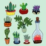 Stellen Sie vom Kaktus und von den anderen Anlagen im Topf ein lizenzfreie abbildung