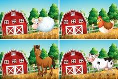 Stellen Sie vom Tier im Bauernhof ein lizenzfreie abbildung