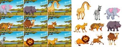 Stellen Sie vom wilden Tier in der Natur ein lizenzfreie abbildung