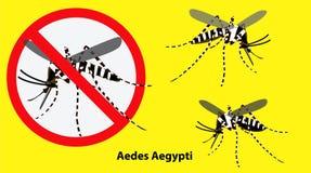 Stellen Sie von Aedes aegypti Moskito lokalisiert ein stock abbildung
