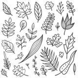 Stellen Sie von den Blättern kritzeln ein vektor abbildung