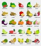 Stellen Sie von den bunten Karikaturfruchtikonen Wassermelone, Mango, Erdbeere, Kantalupe, Apple, Papaya, Orange, Granatapfel, Ro stock abbildung