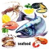 Stellen Sie von den frischen Meeresfrüchten, von den Lachsfischen, von den Panzerkrebsen, von der Auster, von den Miesmuscheln, v stock abbildung