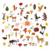 Stellen Sie von den netten und netten Bauernhof- und Waldtieren, Fuchs, Bär, Wolf, Schwein, Kaninchen, Katze, Waschbär, Kuh, Pfer stock abbildung