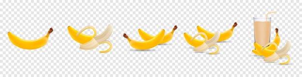 Stellen Sie von den realistischen Illustrationsbananen des Vektors 3d ein Banane, Hälfte zog Banane, dem Bananensaft ab, der auf vektor abbildung