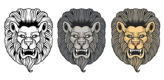 Stellen Sie von den verärgerten Löweköpfen ein lizenzfreie abbildung