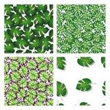 Stellen Sie von vier Mustern mit Palmblättern ein lizenzfreie abbildung