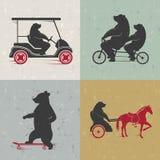 Stellen Sie Zeichen-Spaß-Bären ein Stockbild