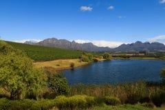 Stellenbosch Lizenzfreie Stockbilder