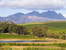 Stellenbosch Royalty Free Stock Photos