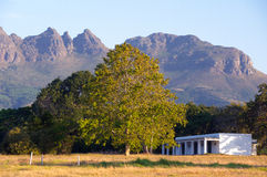 Stellenbosch, South Africa Royalty Free Stock Photography