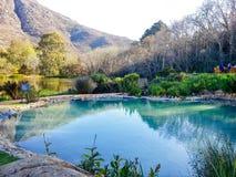 Stellenbosch, Sudafrica Immagine Stock Libera da Diritti