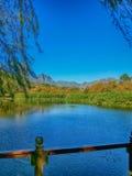 Stellenbosch Sydafrika royaltyfri bild