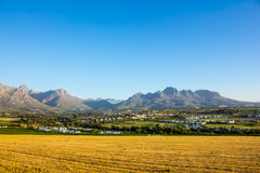 Stellenbosch Wine Country Stock Photo